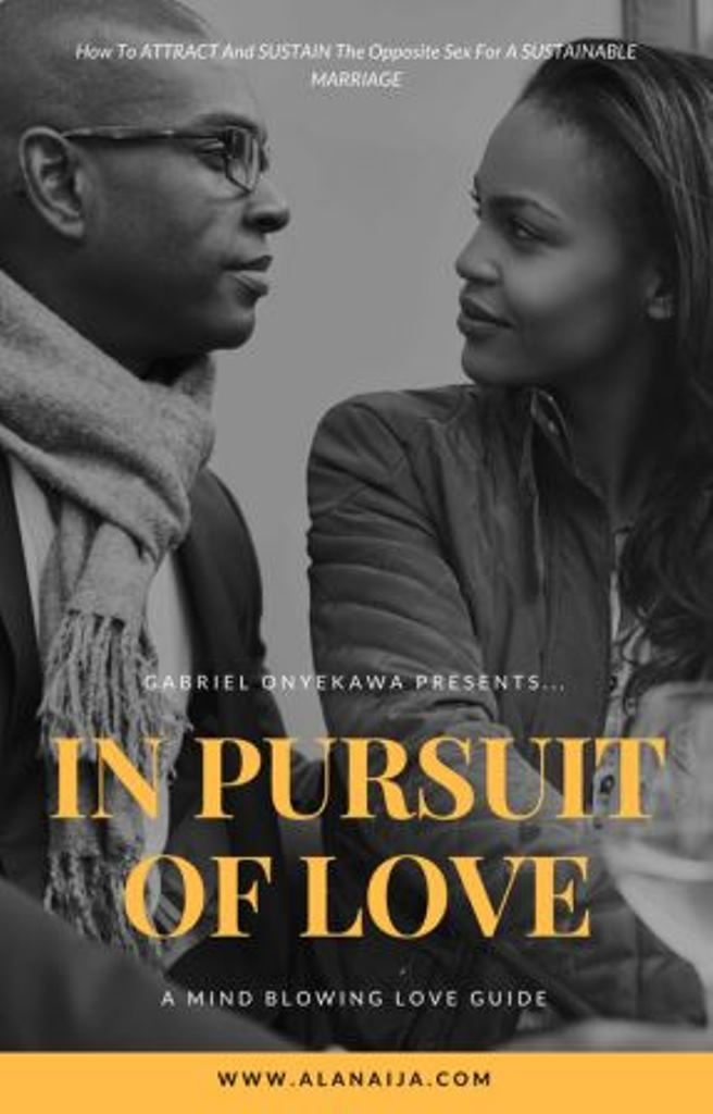 in pursuit of love image